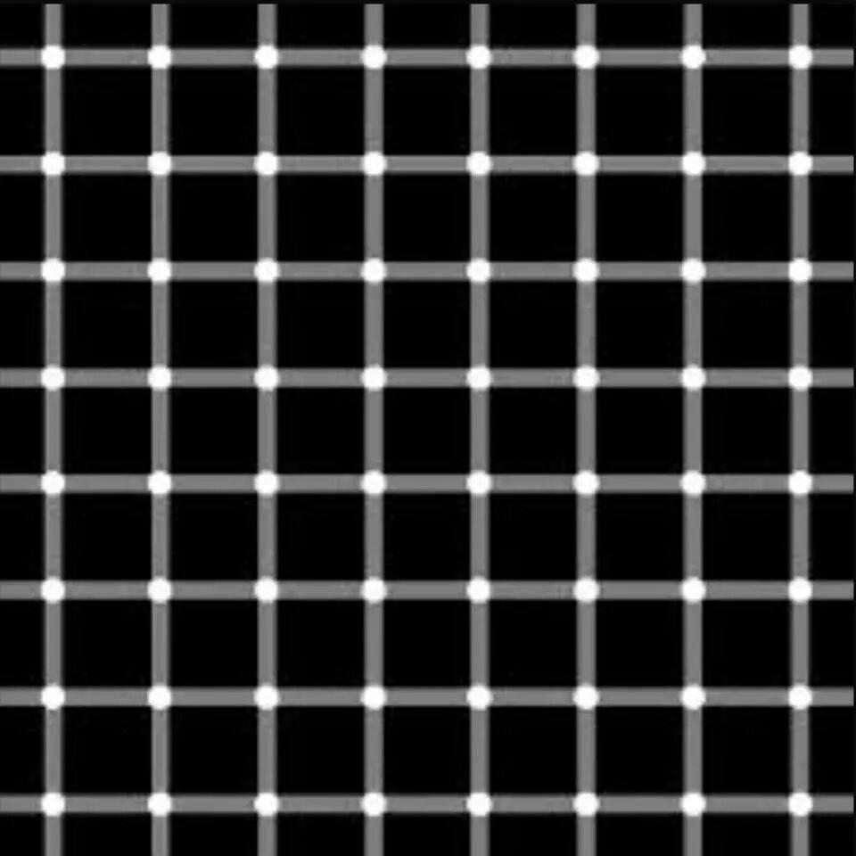 White or black.jpg